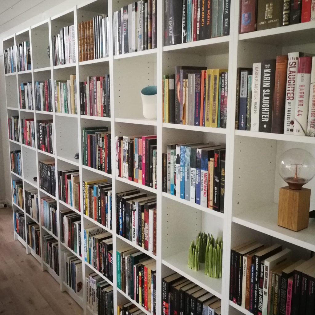 bøger læseoplevelser anbefaling bogblog kulturmor