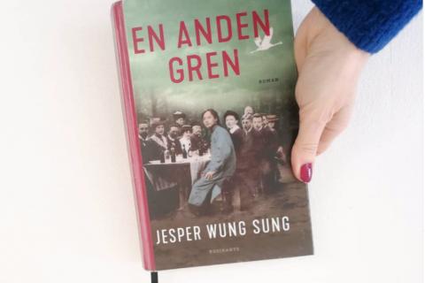 Wung sung en anden gren roman anmeldelse kulturmor