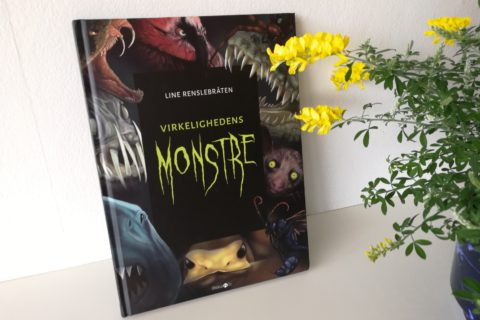 Line Renslebråten virkelighedens monstre straarup og co børnebog anmeldelse kulturmor
